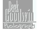 1375100680_DGP-Logo-130x102